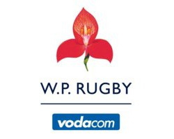 Testimonial - Western Province Rugby